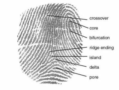 Biometrics and Cybersecurity